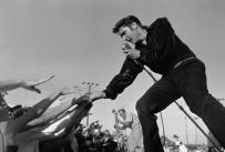 Elvis-shure55