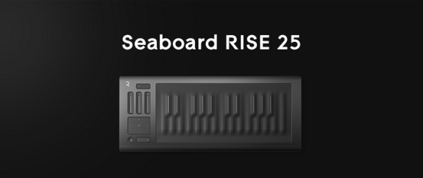 ROLI Rise 25
